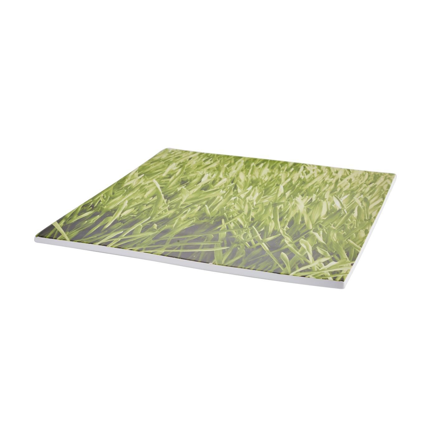 Grass Ceramic Square Platter