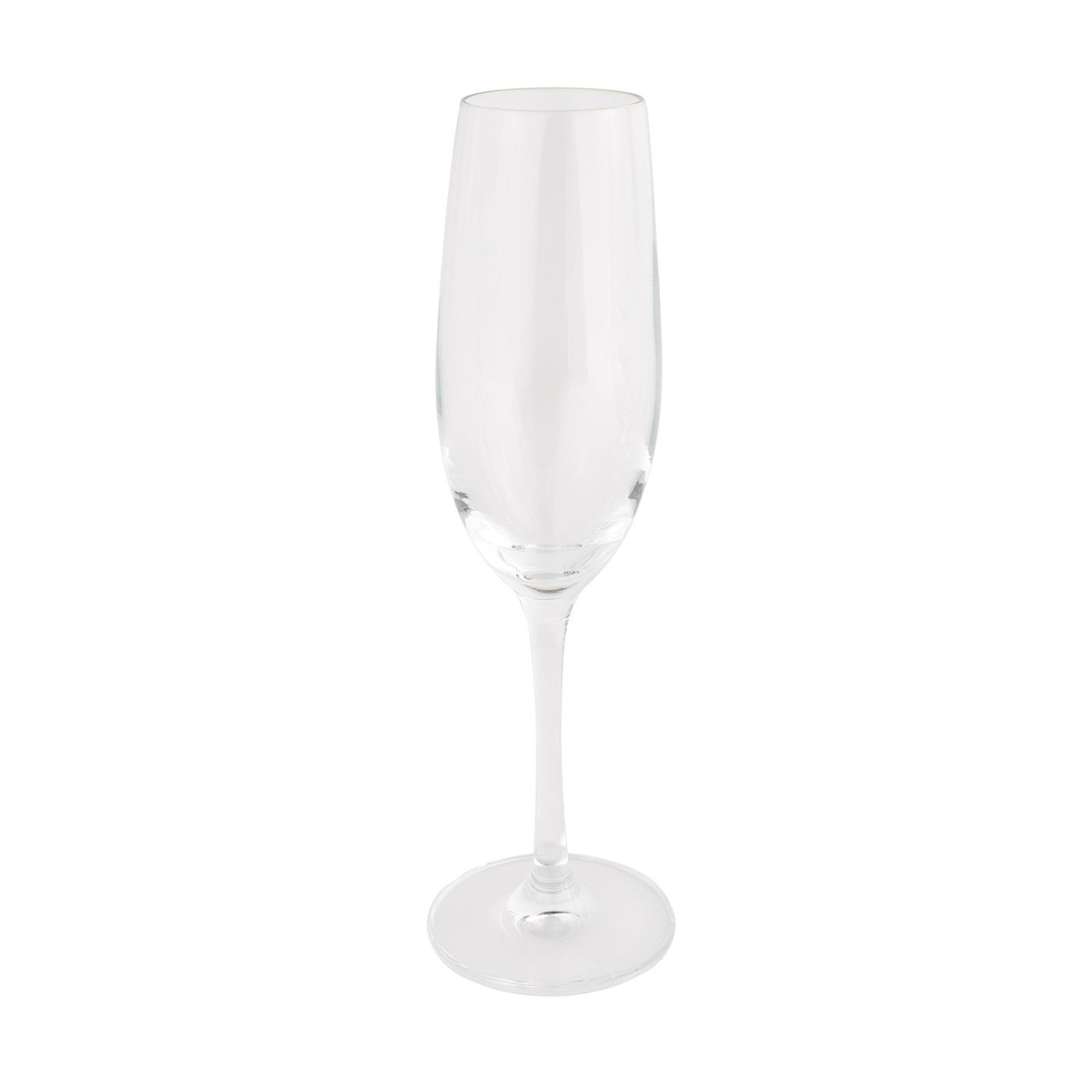 Classico Collection -  Champagne Glass 6.9 oz