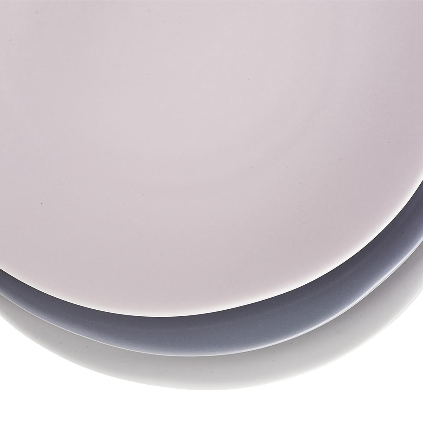 Terra Dinner Plate 10.75